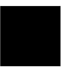 Escudo UAT