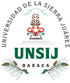 Escudo UNSIJ